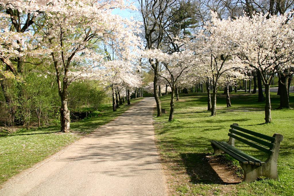 best Toronto parks