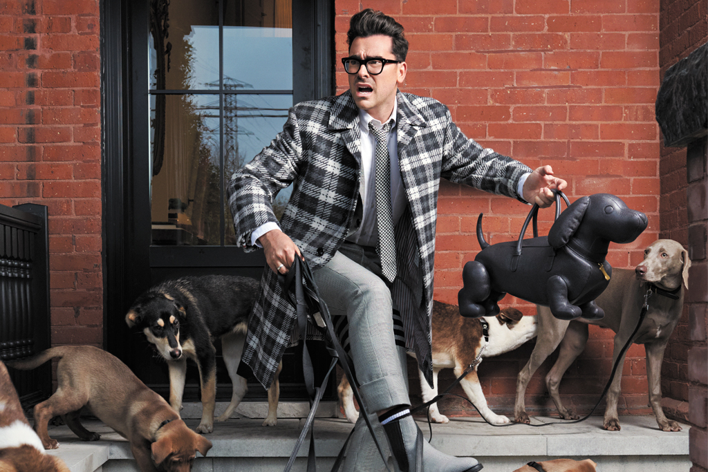 Dan Levy with dogs