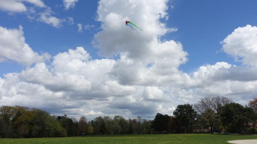 Kite flying in Toronto park