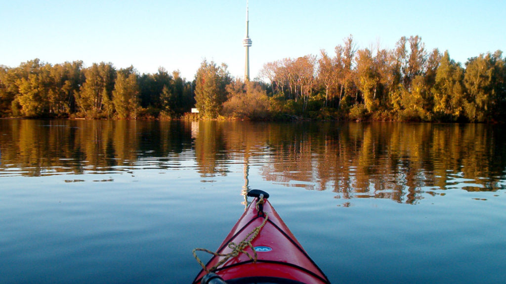 A photo of the Toronto skyline from a kayak.