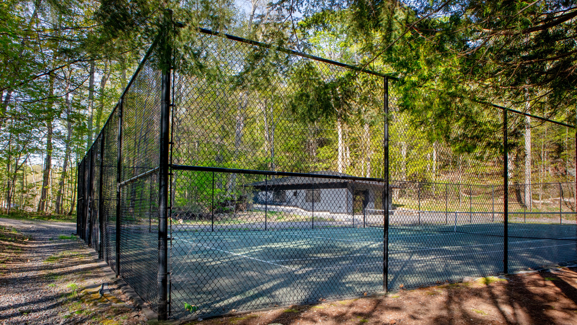 A photo of the tennis court surrounded by trees.